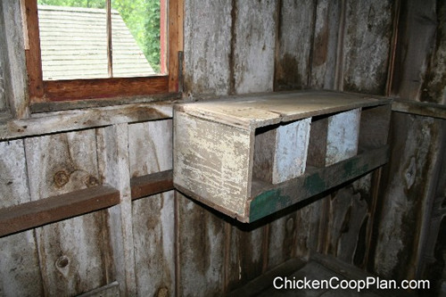 more chicken nestboxes