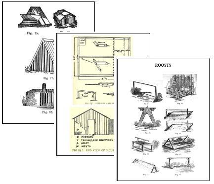 Chicken coop: Chicken coop plan template