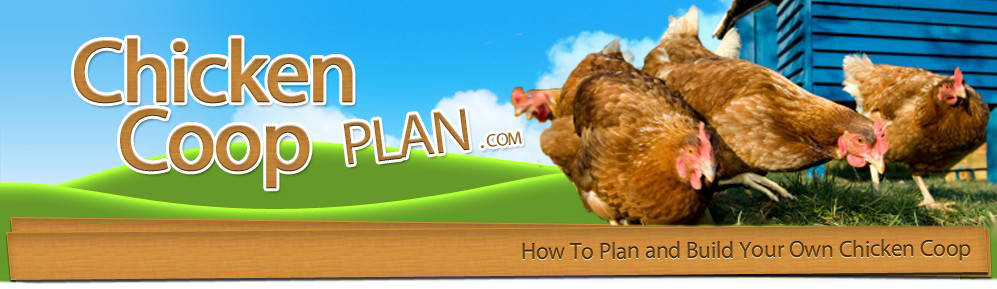 Homemade DIY Chicken Coop Plans Logo